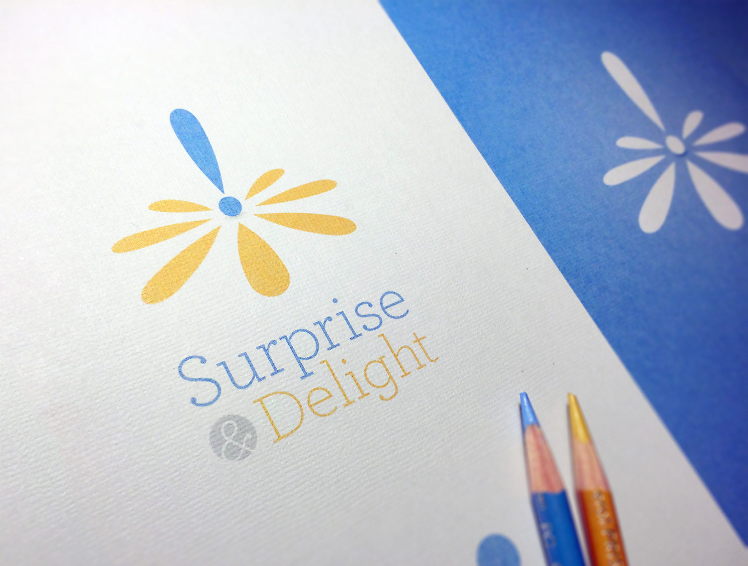 Surprise and Delight Brand Identity
